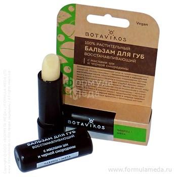 Восстанавливающий бальзам для губ Ботаника Botavikos в официальном интернет-магазине ФОРМУЛА МЁДА 304-029-13 01