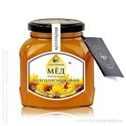 Подсолнечниковый мёд 450 ТЕНТОРИУМ продукция в официальном интернет-магазине ФОРМУЛА МЁДА 101-008-01 01